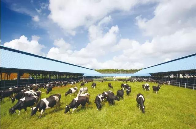 燕塘乳业子公司占用基本农田遭调查
