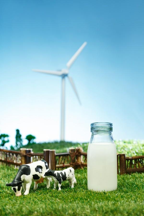 进口奶粉供应链遇大考国产品牌的春天来